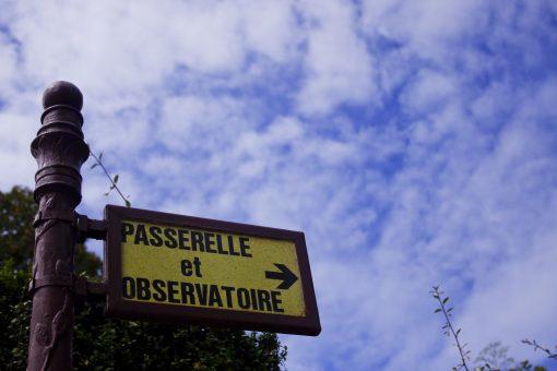 Direction l'observatoire